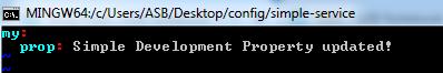 update config server properties