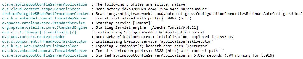 configuration server started